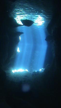 Ammoudi Beach: Underwater Cave