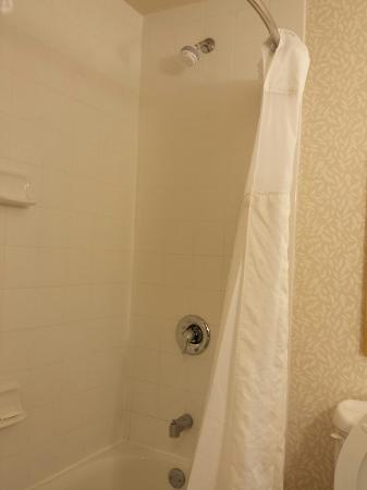 Hilton Garden Inn Nanuet: Shower head close to ceiling nearly out of reach.