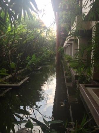 Siripanna Villa Resort & Spa: Side View of Back Patios from Each Room