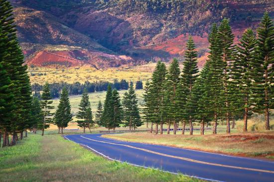 """Lanai, Hawaii's """"Most Enticing Island"""", is an island of intriguing contrasts."""