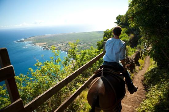Hawaii: On Molokai take a memorable mule ride down to the seaside Kalaupapa National Historical Park.