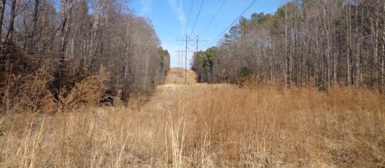 New Kent, VA: Wahrani Trail