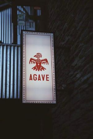 写真Agave枚