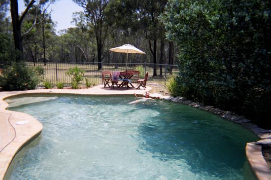 Buffs at Pokolbin : pool