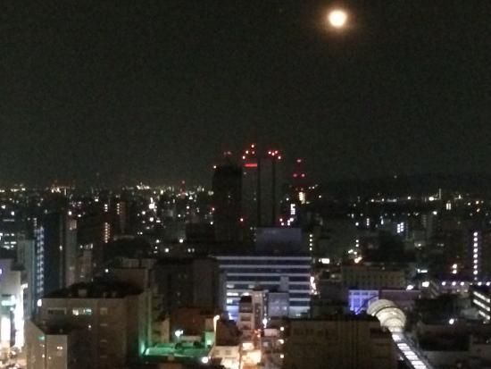 Hotel Nikko Oita Oasis Tower : お部屋からの眺め