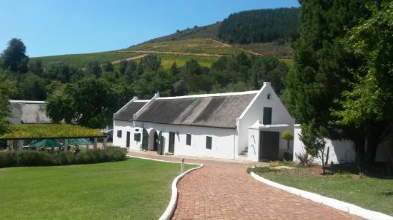 Beautiful Cape Dutch Houses Picture Of Morgenhof Estate