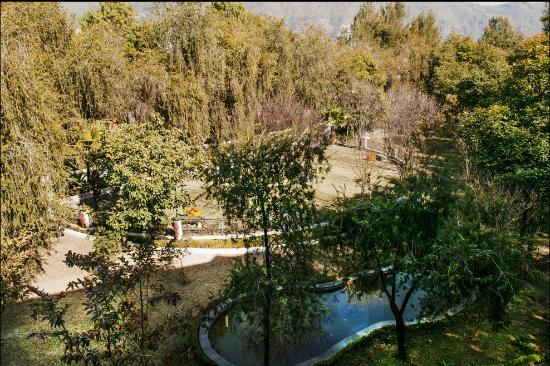 Park Village Hotel & Resort: View of pond from Hamilton room.
