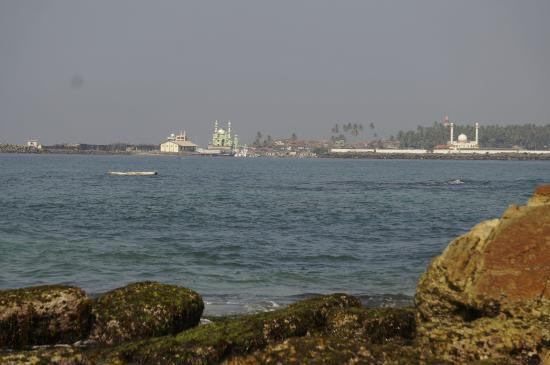 Ideal Ayurvedic Resort: Ocean view at Coconut Bay close to Ideal.