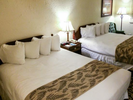 BEST WESTERN Trailside Inn: Two Queen Beds