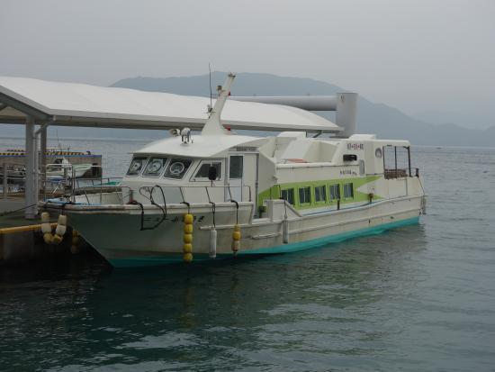 カヤックからの光景 - Picture of Iriomote Island, Taketomicho Iriomote-jima - TripAdvisor