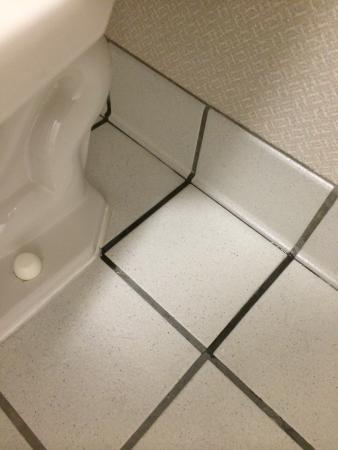 Ramada Salt Lake City: Leaking toilet with water all over floor.