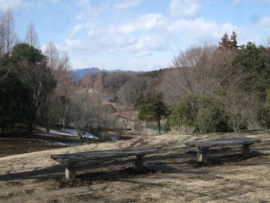 Nagaoka Park