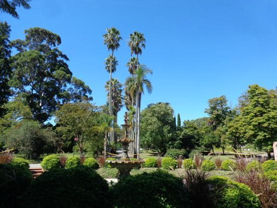 Foto de jardin botanico montevideo informa oes jardim for Jardin botanico tarifas