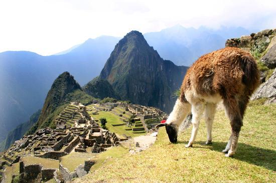Machu Picchu USA
