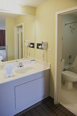 Quality Inn at Arlington Highlands : Guest Bathroom