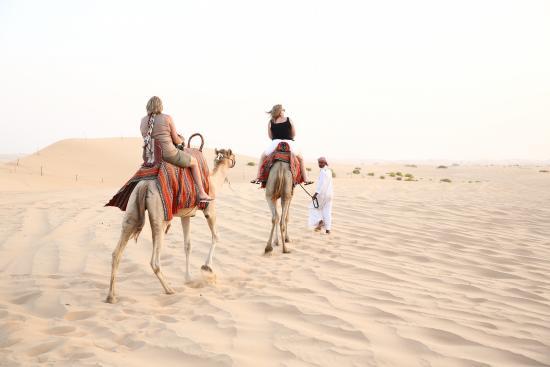 Emirates Tours and Safaris : Camel Riding