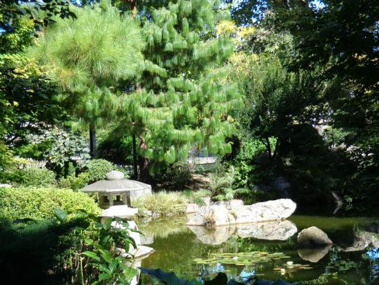 el jardin japones de montevideo el jardn japones de montevideo
