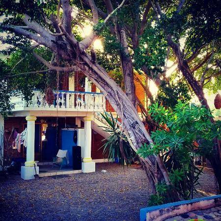 a true oasis - picture of villas las olas, punta de mita - tripadvisor