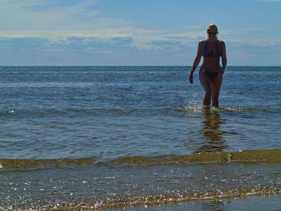 Swimming At High Tide Picture Of First Encounter Beach Eastham