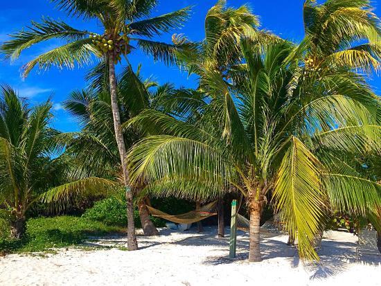 Cocoplum Beach & Tennis Club & Marina: Cocoplum beach