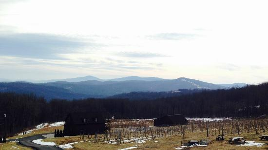 Fox Meadow Winery: Winter view from the winery's deck
