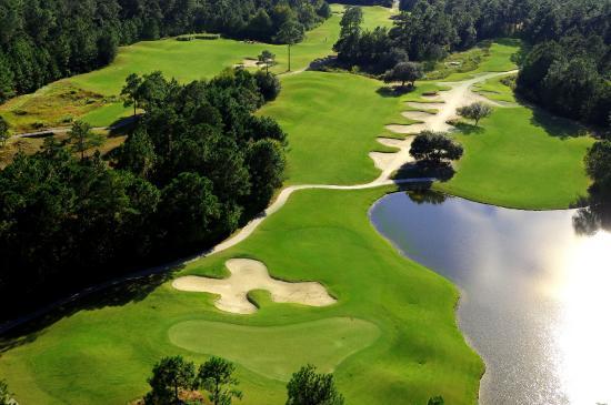Carolina National Golf Club: Ibis#9