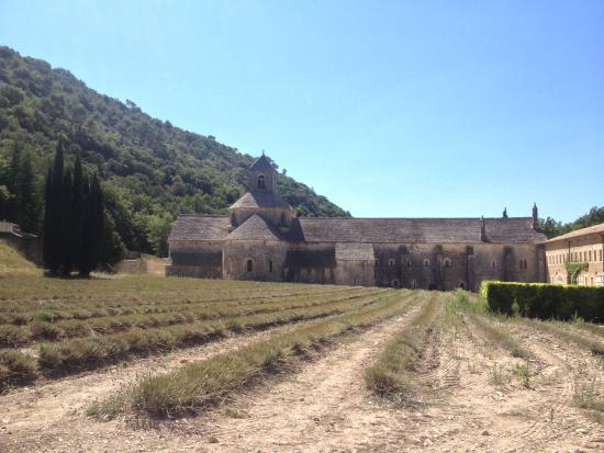 La Petite Auberge du Roussillon : senanque