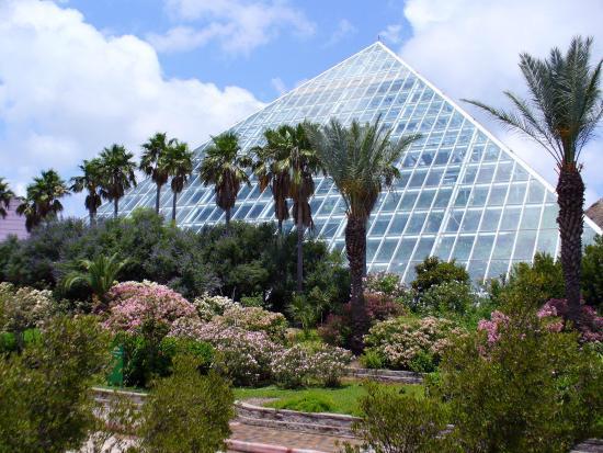 Zip Line Picture Of Moody Gardens Galveston Tripadvisor