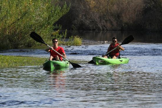 Sit on Top Kayaks - Picture of River's Edge Kayak and Canoe