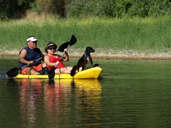 River's Edge : Dog Friendly