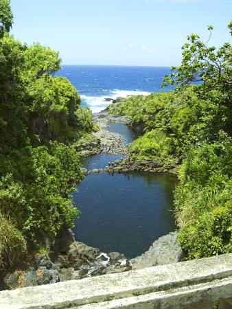 Valley Isle Excursions takes you on one of the most breathtaking drives on earth down the road to Hana Maui. Spectacular cliffs, bamboo jungles, hawaiian waterfalls, tropical scenery and colorful fragrant flowers are part of our