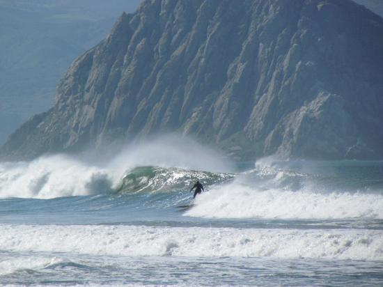 Morro Bay, CA: Surfing by Morro Rock