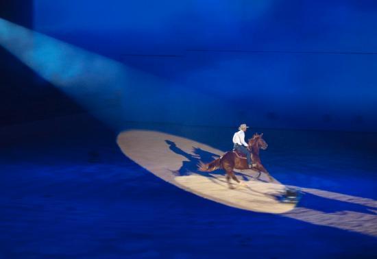 Oxenford, Úc: Lone Rider