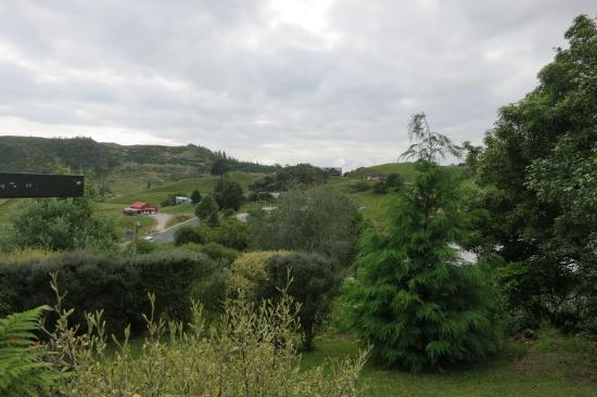Waitomo Caves Guest Lodge : View from Room at Waitomo Guest Lodge