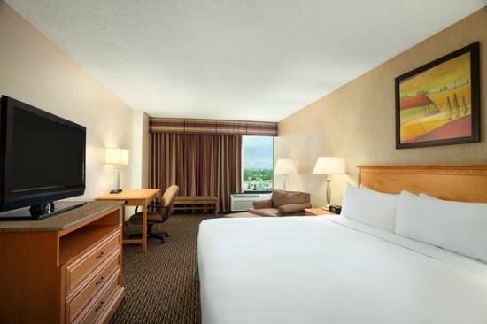 Radisson Hotel Denver Southeast : King Room