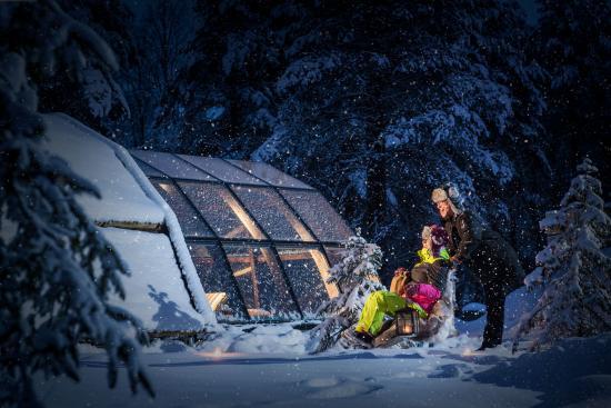Lapland Igloos Ranua