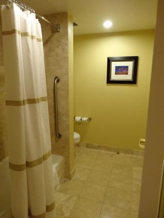 Dallas Marriott Suites Medical/Market Center: The bathroom