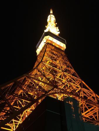 Tokyo Tower: Класс!!