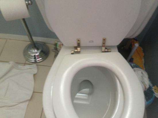 Catskill Mountain Lodge: Broken Toilet Seat