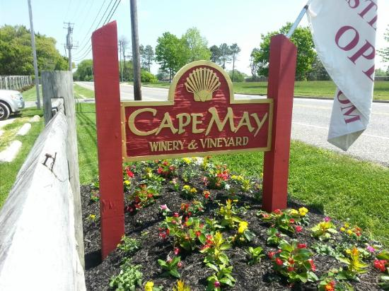 Best Wine Tour In Cape May Nj