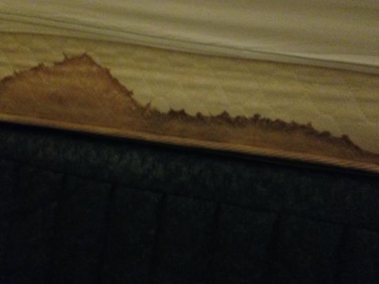 Hampton Inn Phoenix/Scottsdale at Shea Blvd : our mattress