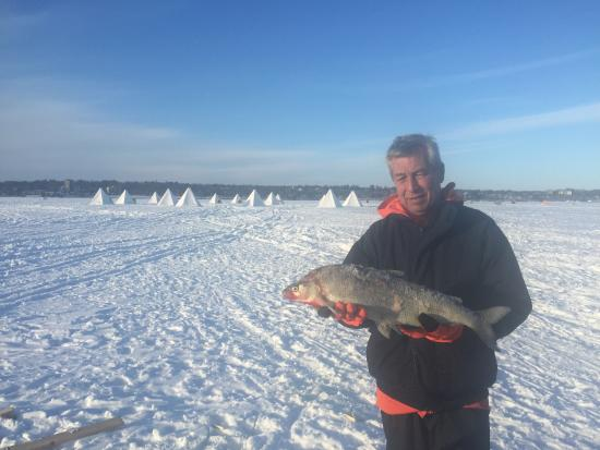 Barrie, Canada: 6 lbs of White Fish!!!