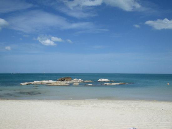 Samui First House Resort: Пляж