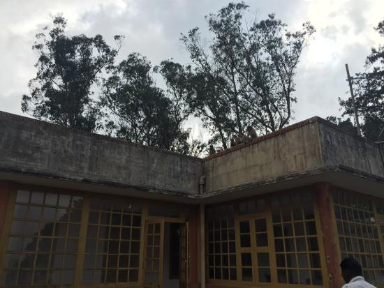 Upper Bhavani Lake: TNEB guest house