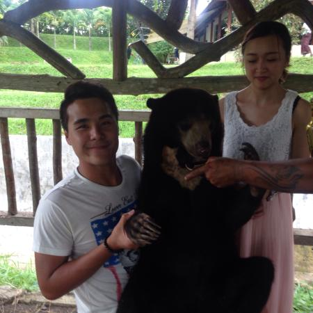 Magilla Bali Tours: Photo with the bear