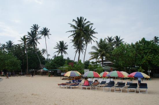 Seaview Deepal Villa: Пляж