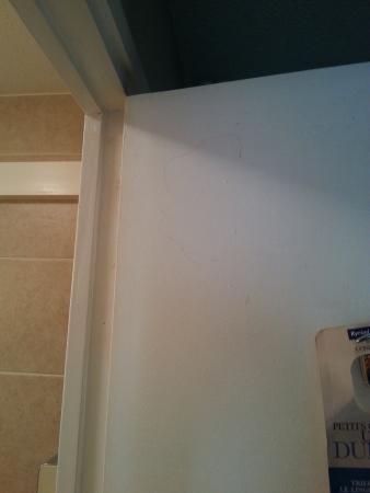Kyriad Chalon Sur Saone Centre: porte de la salle de bain