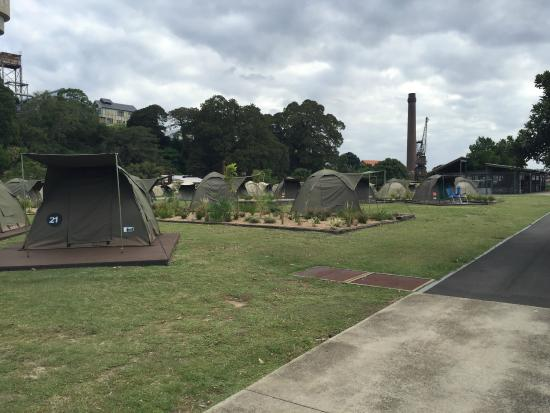 Cockatoo Island Camping: Camping Package Tents