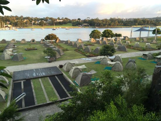 Cockatoo Island Camping: Campground
