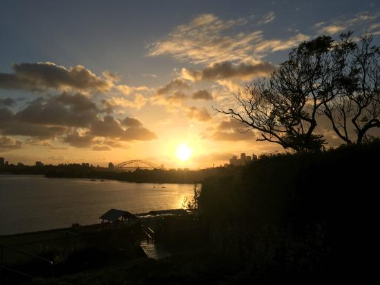 Cockatoo Island Camping: Sydney Sunrise View